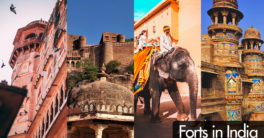 Top 10 Forts in India to Visit | Forts in India